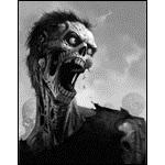 Avatar von Son.of.a.Zombie