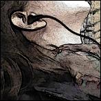 Avatar von NinMon