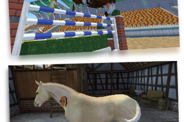 My horse nachbarn kennenlernen