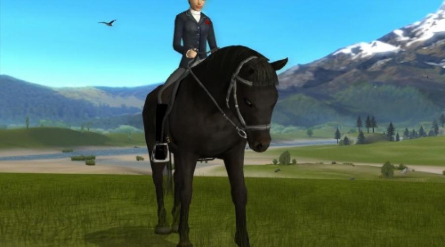 Spiele Für Pferde
