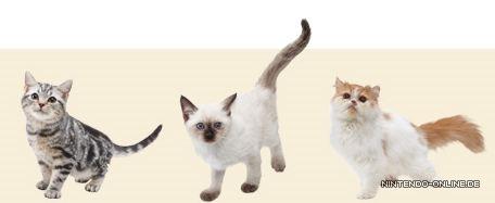 Nintendogs Cats Liste