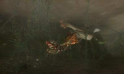 Neue Bilder zu Monster Hunter Tri G 32602