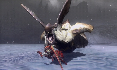 Neue Bilder zu Monster Hunter Tri G 32606